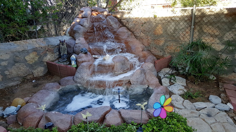 How To Design Pond Water: Features And Decoration from garden category