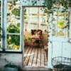 10 Fresh Sunroom Decor Ideas That Will Brighten Your Space