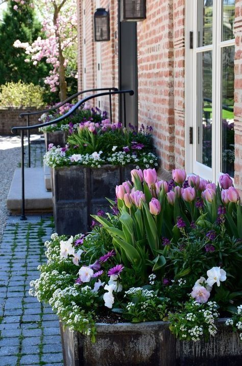 31 Simple Landscaping Ideas How To Decor Your Front Yard -  - garden - Simple Landscaping Idea For Decorating Front Yard front of the house small front yard plants makeover modern porch 18 -