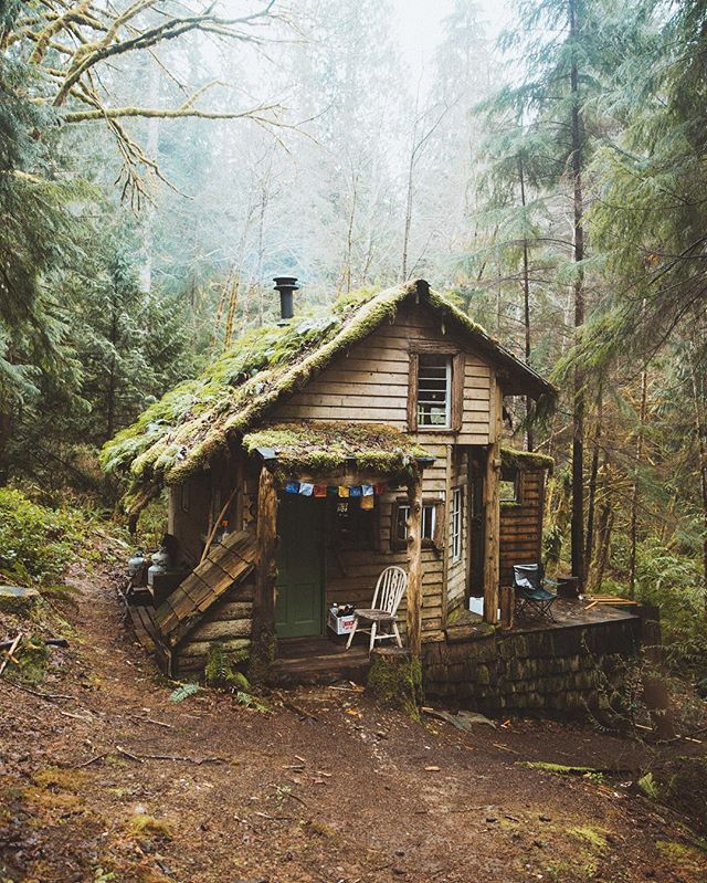 25+ Dreamy & Cozy Cabins You Will Want To Visit This Year -  - architecture - cozy rustic dreamy cabins cottages forest mountains small ideas 10 -
