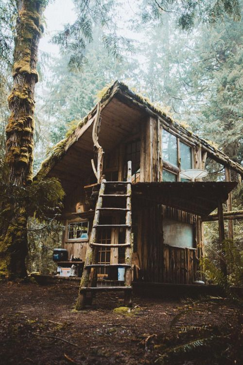 25+ Dreamy & Cozy Cabins You Will Want To Visit This Year -  - architecture - cozy rustic dreamy cabins cottages forest mountains small ideas 5 -