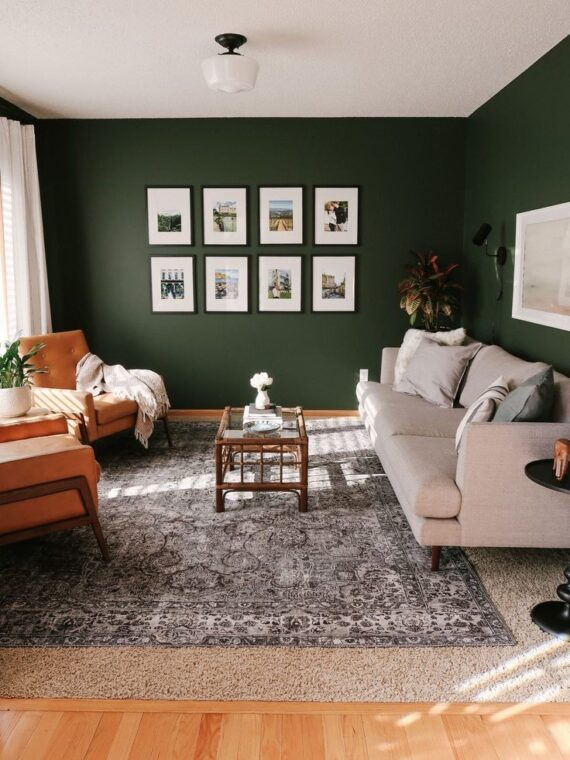 64 Best Area Rugs Inspiration